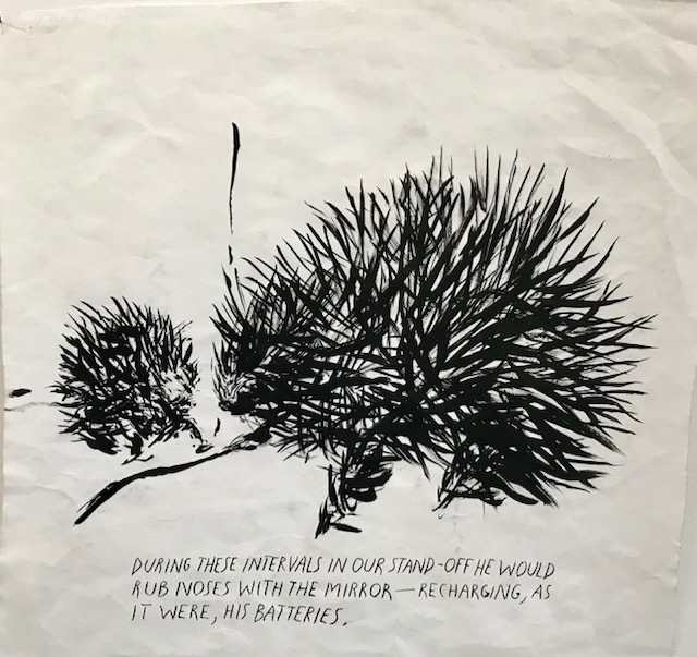 gallery-weekend-raymond-pettibon-cfa-2-femalegazesite.wordpress.com