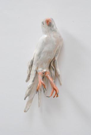 Vogel Nr. 84